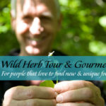 Wild Foraging - BC Rainforest Walk
