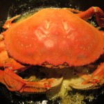 Baked Garlic Dungeness Crab Recipe