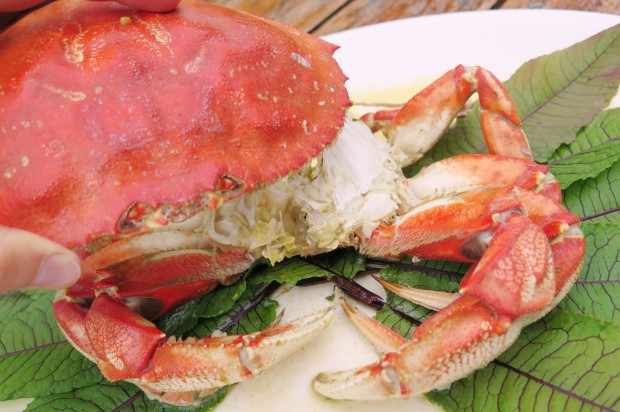 baked dungeness crab