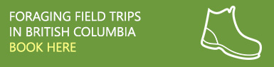 Foraging Field Trips in British Columbia - Book Here