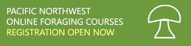 Pacific Northwest Online Foraging Courses - Registration Open Now